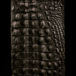 Black crocskin on calfskin