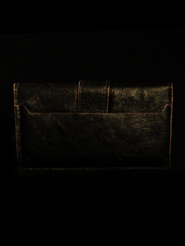 Treasure Chest Long Wallet