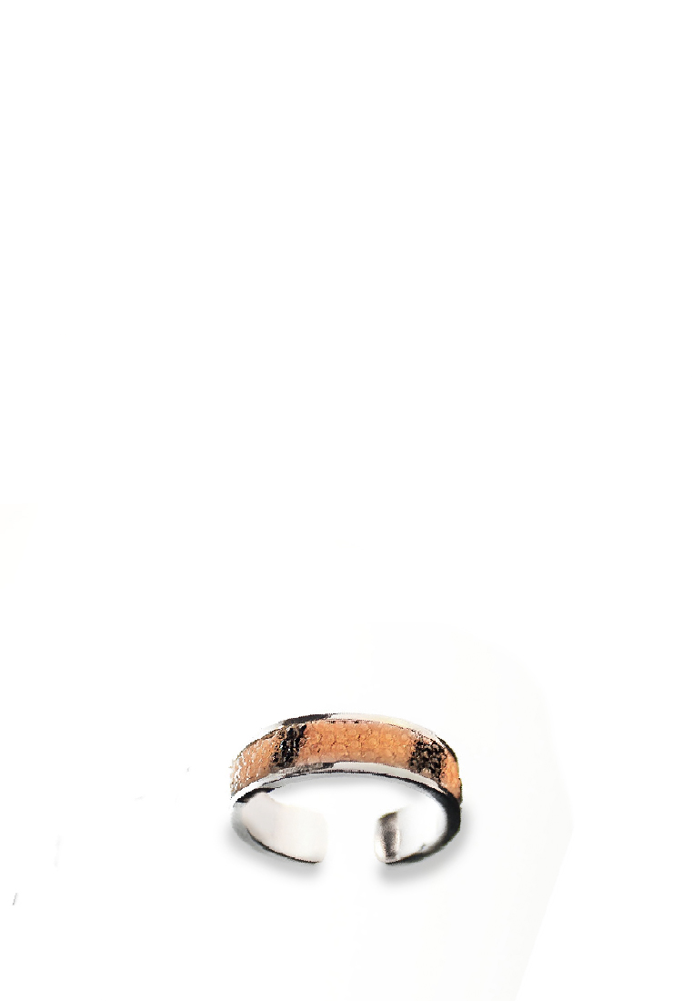 ring4 2