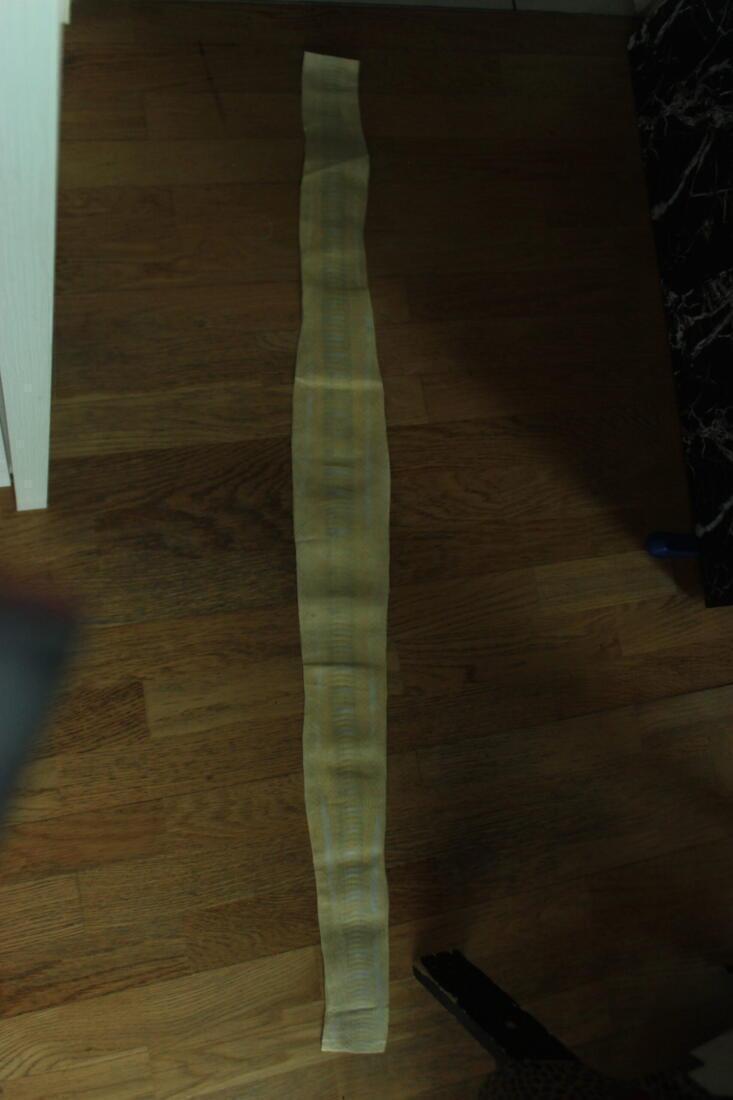 Snakeskin Leather