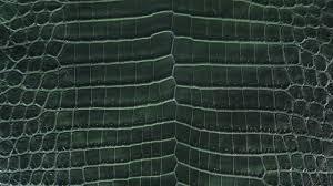 Green Croc Skin
