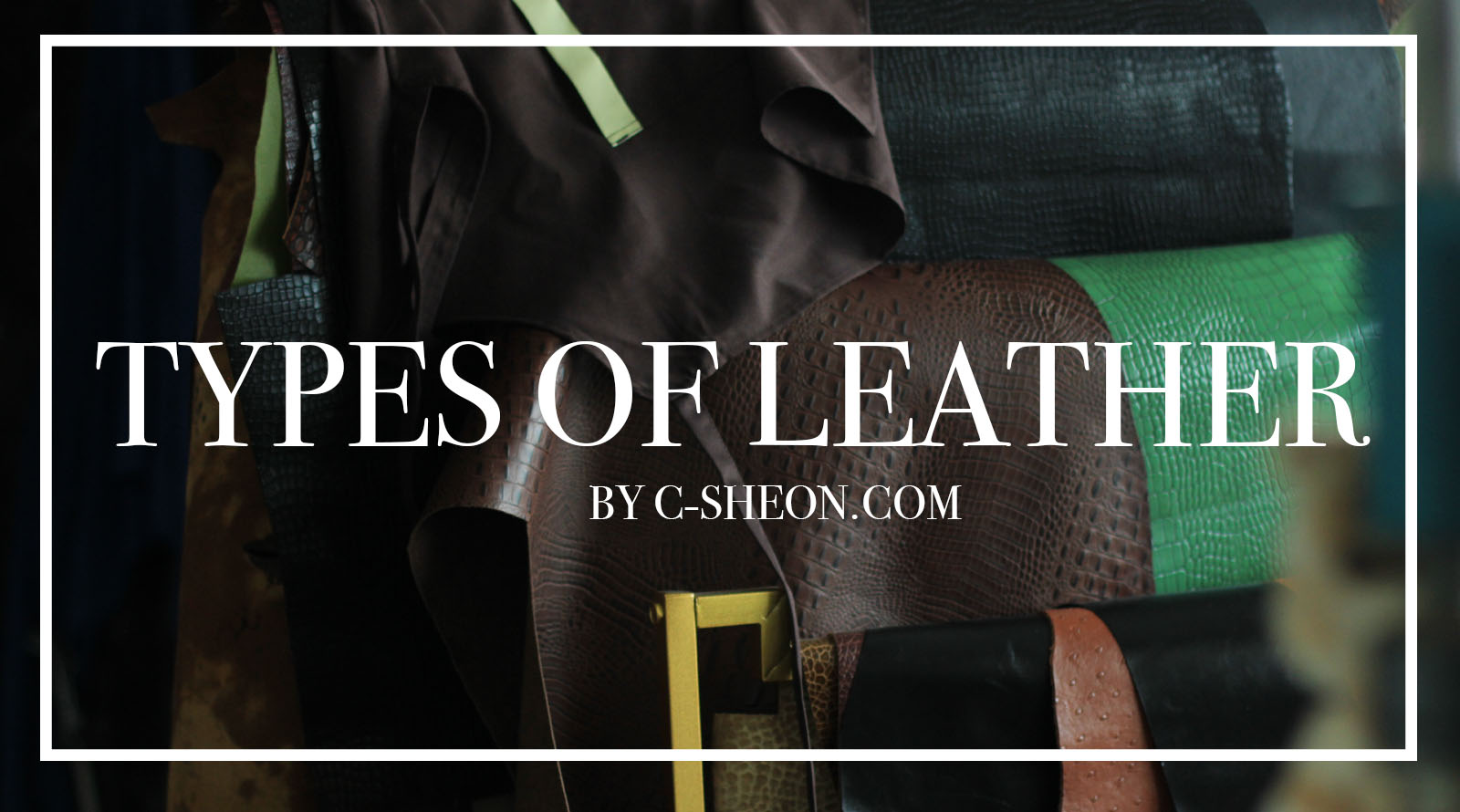 Types of different Animal Leather – Full Guide by CSHEON Leather Atelier